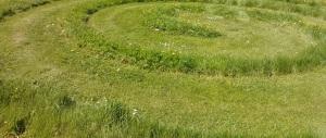 Cropped grass maze